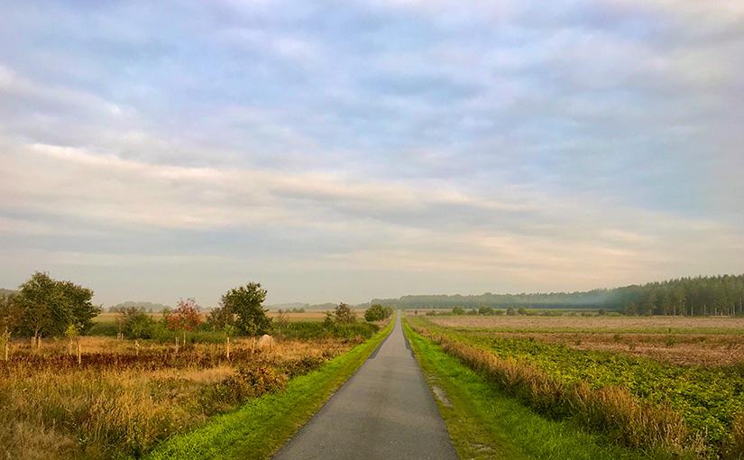 Morgens, auf dem platten Land…